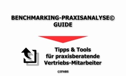 IFABS Thill Der Benchmarking-Praxisan